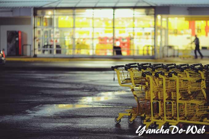 ショッピングカート導入したい?って・・・